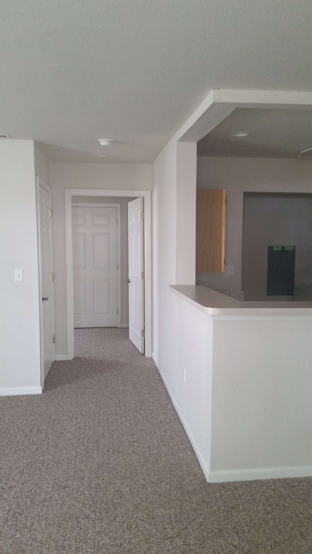 1 bedroom hall