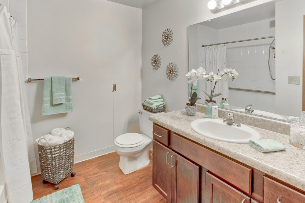 Ambrose Ridge Apartments Grand Rapids MI Bathroom 9204
