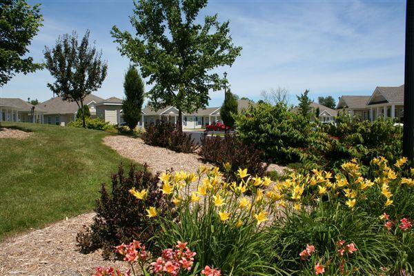 Apple Ridge Landscape