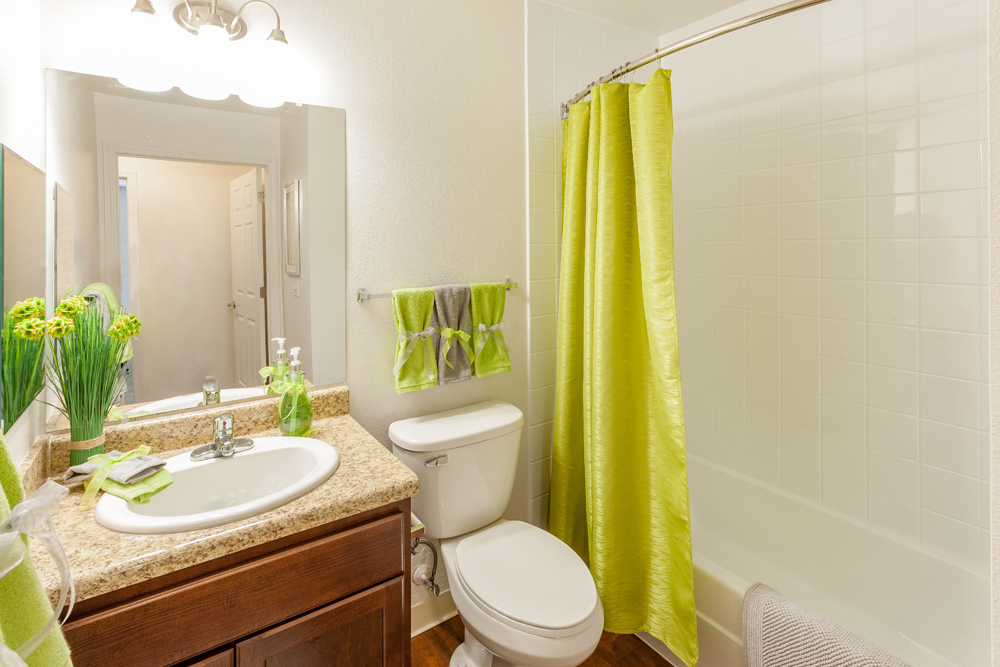 Silver Creek Apartments Flat Rock MI Guest Bathroom 9929