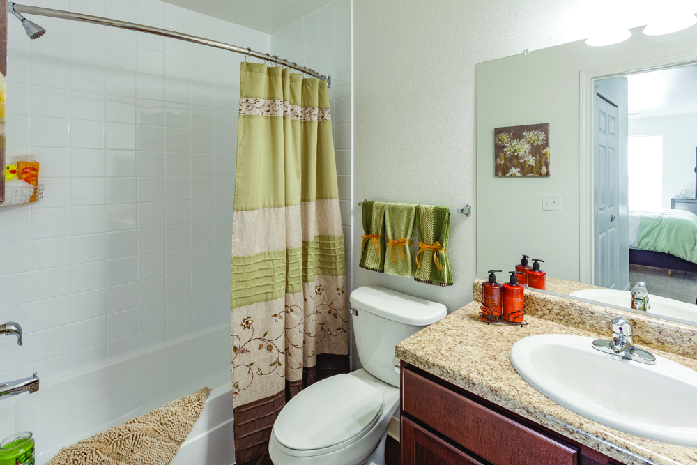 Silver Creek Apartments Flat Rock MI Master Bathroom 9965